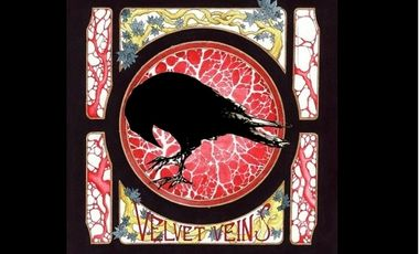 Visuel du projet E.P des Velvet Veins.
