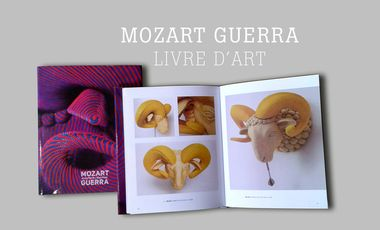 Visueel van project ÉDITION LIVRE D'ART MOZART GUERRA.
