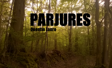 Visuel du projet Parjures