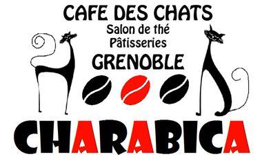 Project visual Charabica - Café des chats à Grenoble !