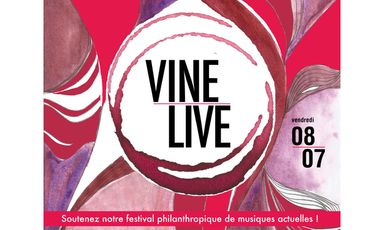 Visueel van project VINELiVE Festival de Musique itinérant et caritatif
