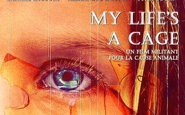 Visueel van project My Life's a Cage : une boîte à projets artistiques engagée pour les animaux