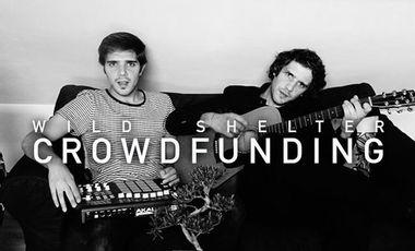 Visuel du projet Help Wild Shelter record their first album!