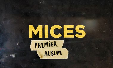 Project visual MICES - 1er Album
