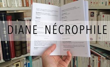 Project visual Diane nécrophile - D'Abbesses Editions