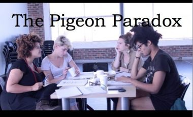 Visueel van project The Pigeon Paradox