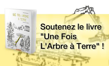 """Visuel du projet """"Une Fois L'Arbre à Terre"""" de Mathias Bonneau"""