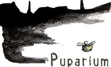 Project visual PUPARIUM - Court-métrage