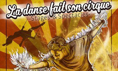 """Visueel van project Festival """"La Danse fait son Cirque"""""""
