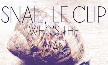 Project visual Clip SNAIL -  Who's The Man