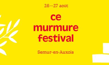 Project visual Ce Murmure Festival 2016