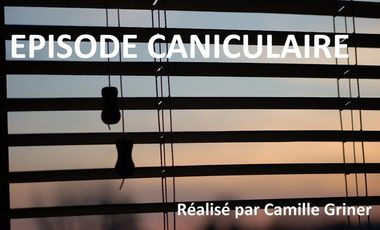 Project visual Episode Caniculaire