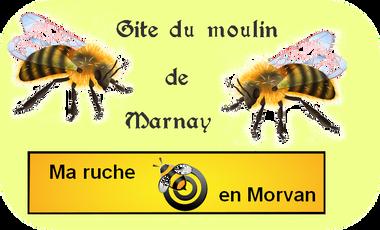 Visueel van project Ma ruche en Morvan