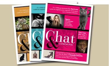 Visueel van project Chat & Compagnie, revue féline