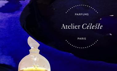 Project visual Atelier Céleste, la nouvelle parfumerie à la française