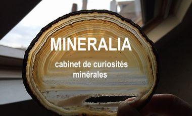 Visueel van project Mineralia, cabinet de curiosités minérales