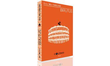 Visuel du projet Brutus un roman noir à la narration tirée au couteau