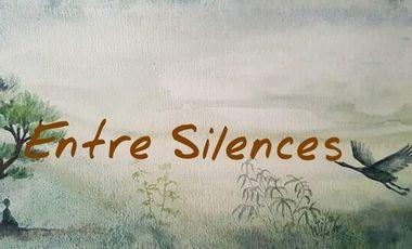 Visueel van project Album musical Zen ENTRE SILENCES