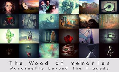 Project visual The Wood of memories