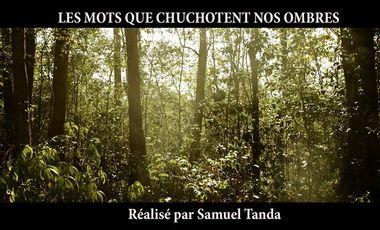 Visueel van project Les mots que chuchotent nos ombres