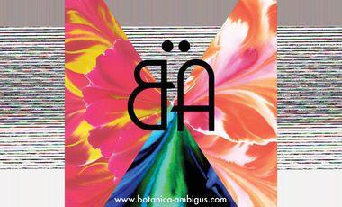 Project visual Botanica Ambigus, les jolis foulards de soie