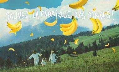 Visueel van project La Fabrique des Singes on the way !