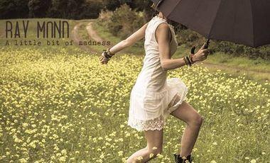 "Visuel du projet 1er album de Ray Mond ""A little bit of Madness"""