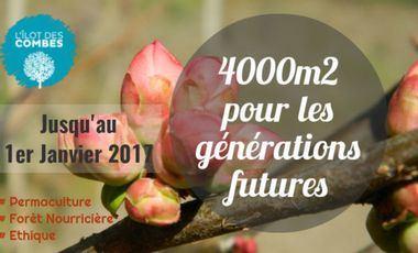 Visueel van project L'îlot des Combes : plantons une forêt nourricière