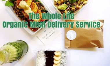 Project visual The Whole Life Organic Meal Delivery Service