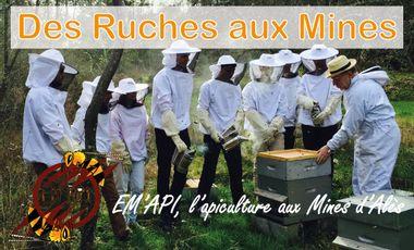 Visuel du projet Des ruches aux Mines