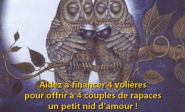 """Visueel van project """"Aidez à financer 4 volières pour offrir à 4 couples de rapaces un petit nid d'amour !"""""""