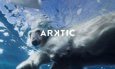Project visual Expédition polaire ARKTIC