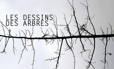 Visueel van project LES DESSINS DES ARBRES - exposition de tableaux en verre