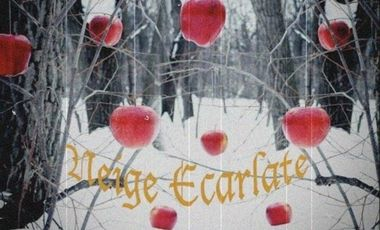 "Visueel van project ""Neige Ecarlate"" par la Cie Baz'Arts"