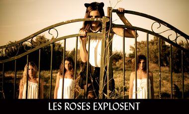 Visueel van project Les Roses explosent