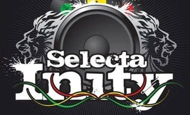 Visueel van project REMIXTAPE 100% DUBPLATES by SELECTA INITY