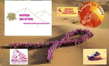 Project visual Les Roses en N'Or Equipage N°34 Trophée Roses des Sables 2017