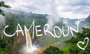 Visuel du projet Les compas de la Rob agissent pour la biodiversité du Cameroun