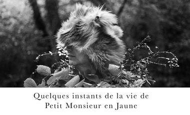 """Visueel van project """"Quelques instants de la vie de Petit Monsieur en jaune"""""""