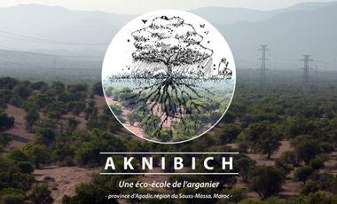 Visueel van project AKNIBICH, une éco-école de l' arganier