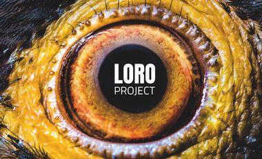 Visuel du projet LORO PROJECT