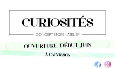 """Visueel van project """"Curiosités"""" Concept store - Atelier"""