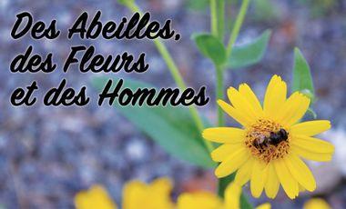 Project visual Des Abeilles, des Fleurs et des Hommes