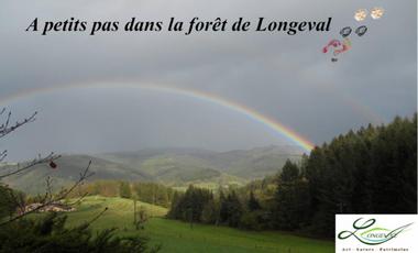 Project visual A petits pas dans la forêt de Longeval
