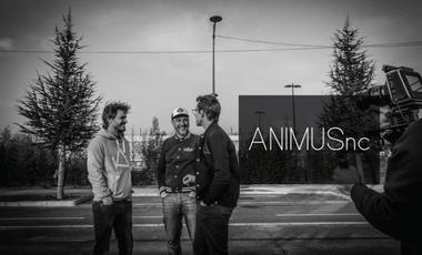 Visueel van project Animus NC, la marque Française de streetwears chic éco-responsable