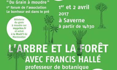 Project visual Aidez nous à financer la venue de l'expert mondial de la Forêt: Francis HALLE!