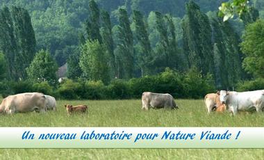 Project visual Un laboratoire Nature Viande!