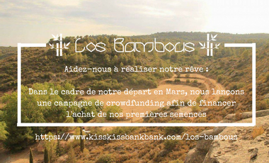 Visueel van project Los Bambous