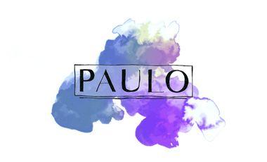 Visueel van project PAULO