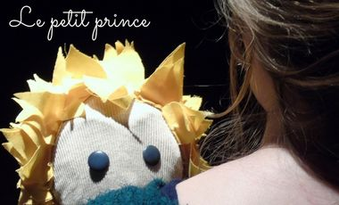 Project visual Le Petit Prince